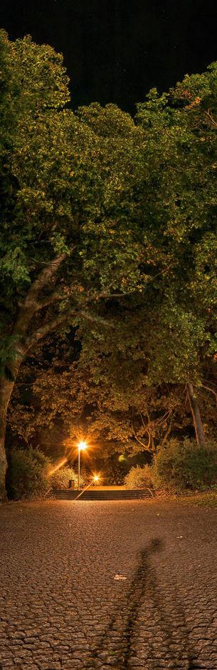 Stadtpark Erfurt bei Nacht
